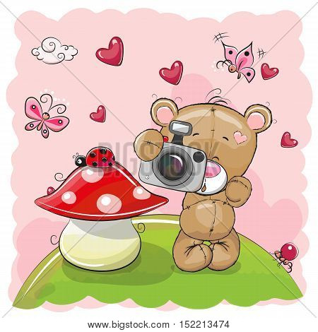 Cute cartoon Teddy Bear with a camera on the meadow