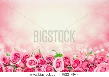 border of Beautiful fresh sweet pink rose for love romantic valentine background