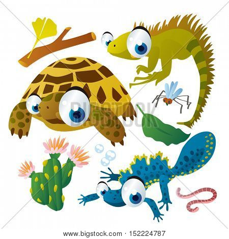 cute vector cartoon reptile collection. colorful illustrations of tortoise, iguana, newt