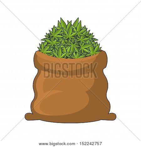 Full Sack Of Cannabis. Large Bag Of Marijuana. Smoking Drug. Heap Hemp