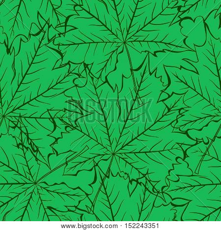 seamless pattern of transparent maple leaves with veins on a green background