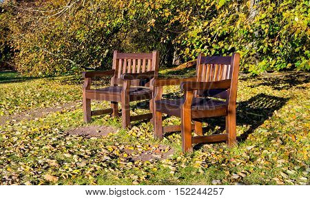 two benches in the park, autumn and leaves lie on the ground, sunny day, beautiful nature, yellow foliage, lonely, natural landscape, in the background autumn yellowing bushes, october