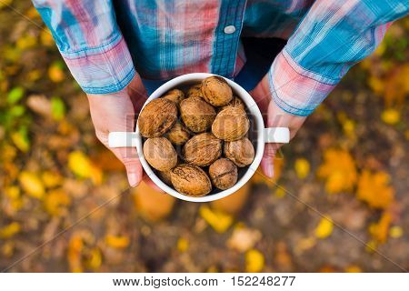 Walnuts In The Hands Of The Girls.