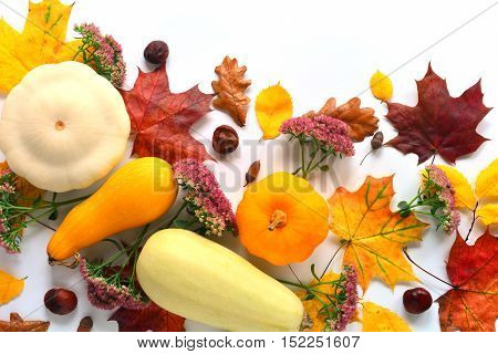 Mock up with vegetables, flowers, chestnuts and autumn leaves. Top view on white background. Autumn flat lay. Close up composition.