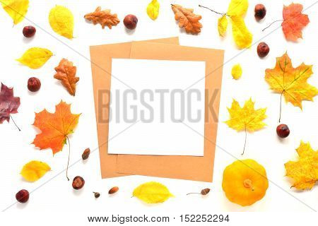 Composition with paper, chestnuts, pumpkin and autumn leaves. Top view on white background. Autumn flat lay. Mock up for art work