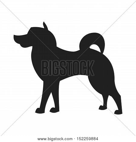 Vintage vector image of a black silhouette of a thoroughbred Malamute Dog standing straight isolated on white background looking like a shadow of the image.