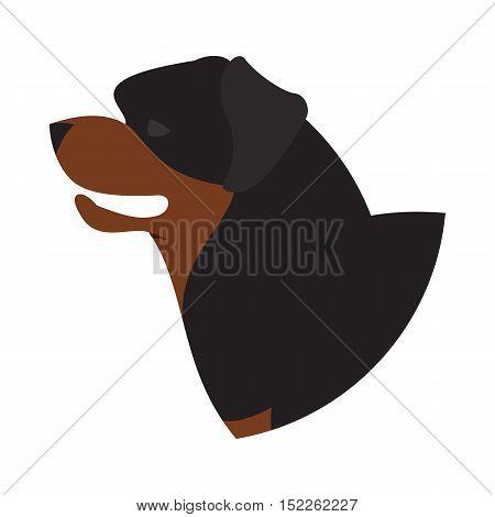 Dog head rottweiler. Pet animal isolated on white background. Vector illustration