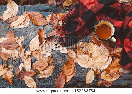 Tin mug with warm tea and blanket on wooden bench on fallen yellow autumn leaves in the forest, outdoor weekend, fall camping, top view