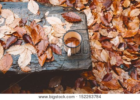 Tin mug with warm tea on wooden bench on fallen autumn leaves in the forest, outdoor weekend, fall camping, top view