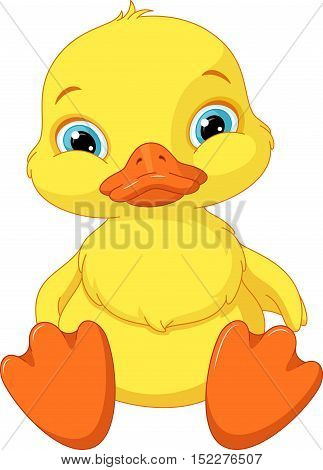 Cute duckling sitting on a white background