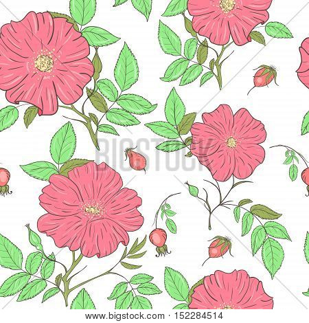 Bright wild rose pattern for scrapbooking, textiles, various materials.