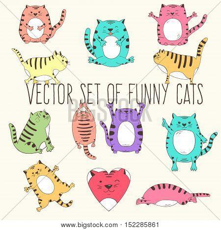 Vector set of cute fat cats. Vector illustration