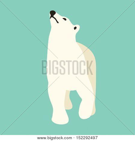 polar bear vector illustration style Flat profile