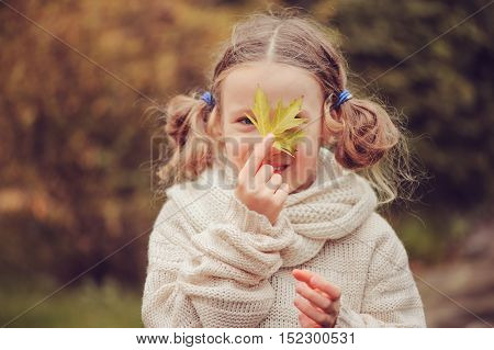 kid girl walking in the garden in late october or november and playing with maple leaf. Children exploring nature and learning about seasons changing