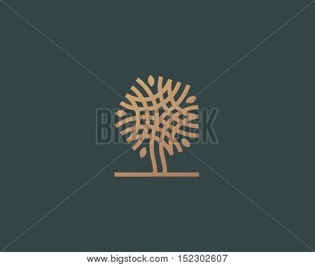 Abstract linear vector tree logo icon design. Universal luxury premium solid symbol. Creative park nature bio relax spa sign logotype