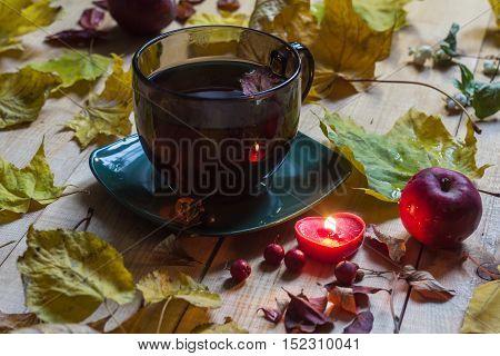 evening tea mug, Autumn mood, autumn leaf fall