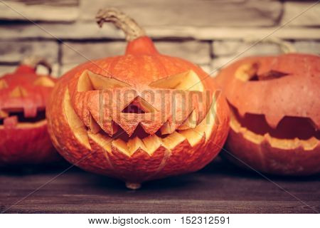 group of halloween spooky pumpkins family portrait