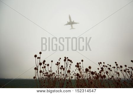 Airplane In Thick Fog