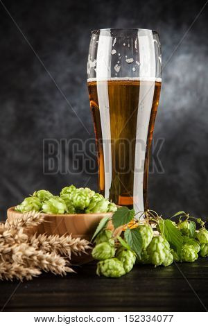 Beer glass on dark background