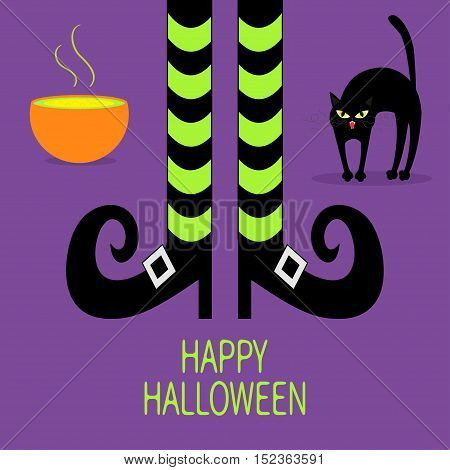 Cat arch back. Cauldron green potion. Witch legs with striped socks and shoes. Happy Halloween. Greeting card. Flat design. Violet baby background. Vector illustration