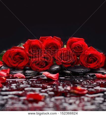 Set of red rose with petals and wet stones