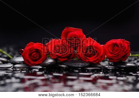 Still life with set of red rose and wet stones