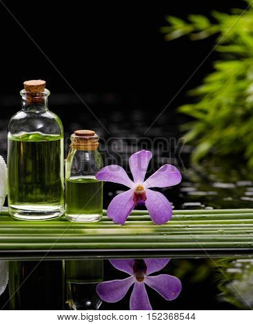 tranquil spa scene- orchid with black stones with candle ,oil green plant