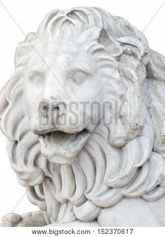 the Sculpture of a lion from marble