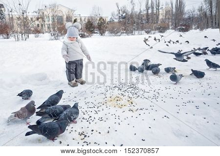 Little girl walks in a snowy winter park. She feeds pigeons. Happy childhood.
