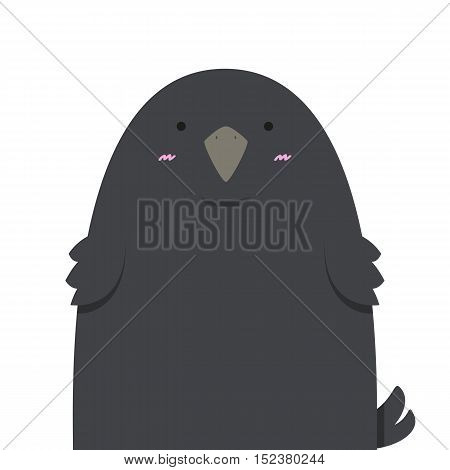 cute big fat crow on white background