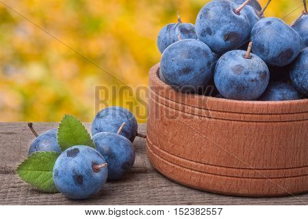 blackthorn berries in a wooden bowl on a table with blurred background.