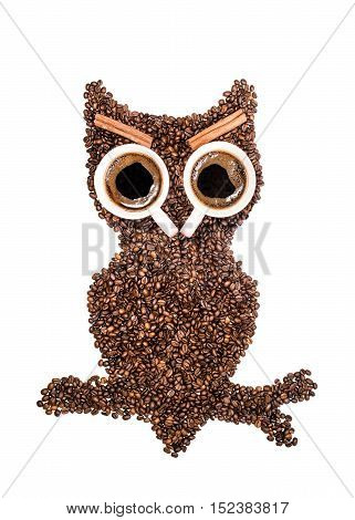 Positive owl, made of coffee beans and two cups eyes with cinnamon eyebrows isolated on white background.