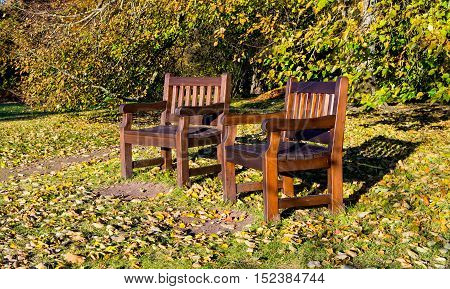 two benches in the park, autumn and leaves lie on the ground
