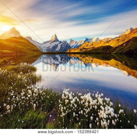 Great view of Mt. Schreckhorn and Wetterhorn above Bachalpsee lake. Dramatic and picturesque scene. Location place Swiss alps, Bernese Oberland, Grindelwald, Europe. Soft filter effect. Beauty world.