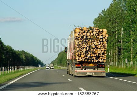 Belarus - August 8 2016: Large truck transporting wood on the highway Belarus