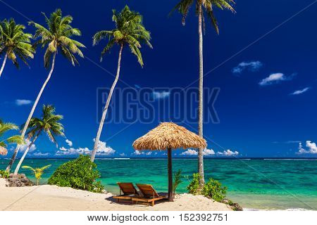 Two beach chair under umbrella with palm trees, Samoa Islands