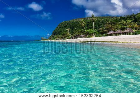 Tropical vibrant natural beach on Samoa Island with palm trees and wooden fales