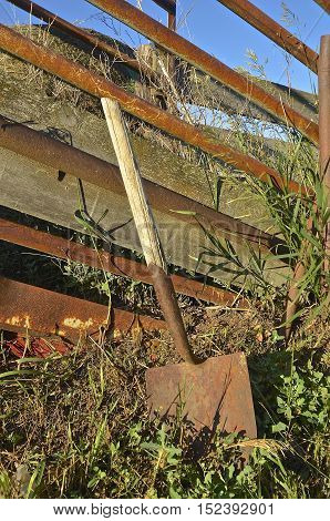 An old rusty wooden handled spade leans against a weed covered cattle loading chute
