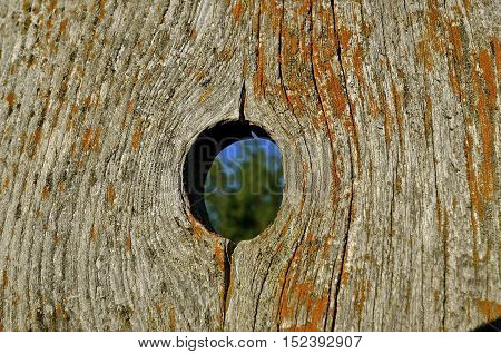 An old weathered  corral fence board provides a perfect knot hole