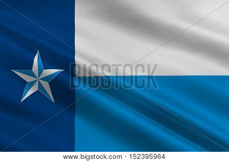 Flag of Dallas County Texas of USA. 3D illustration