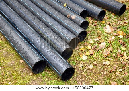 Many industrial black plastic pipes with water drops on the grass with leaves in perspective.
