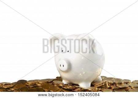 Piggy bank surrounded by coins - isolated image
