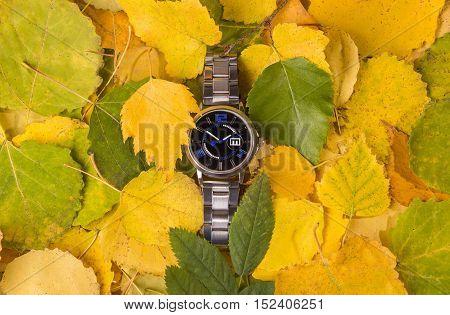 Wristwatch in autumn Leafs time to season