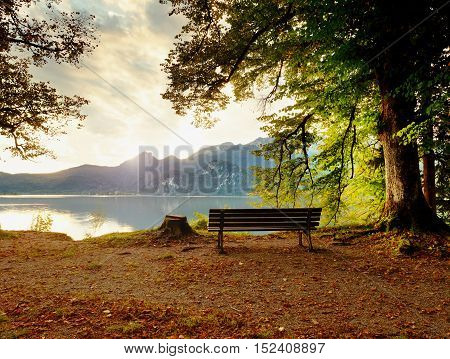 Empty Wooden Bench At Mountain Lake. Bank Under Beeches Tree,
