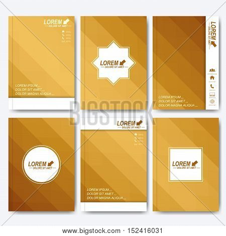 Modern vector template for brochure, Leaflet, flyer, cover, magazine or annual report. A4 size. Business, science, medicine and technology design book layout. Abstract presentation with gold lines