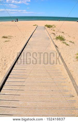 Asphalt Lonely Road