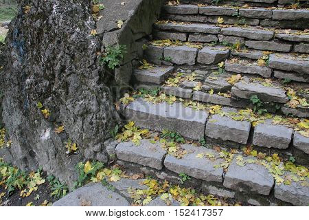 autumn leaves on a beautiful old stone stairs in the park