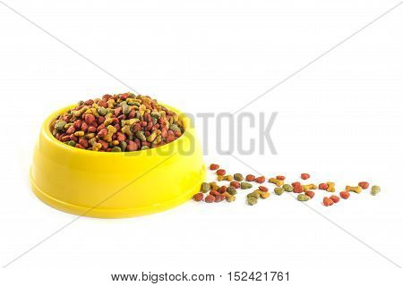 Dog food in bowl, isolated on white background