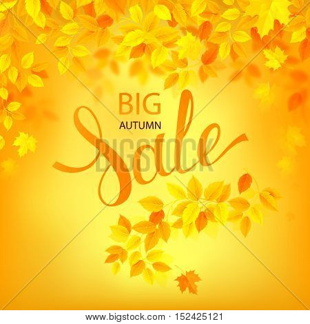 Autumn Big Sale lettering on a bright orange background. Decorated by autumn branch with season leaves.