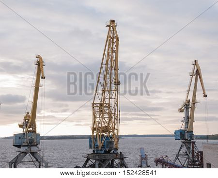 Port cranes in the seaport. industrial background
